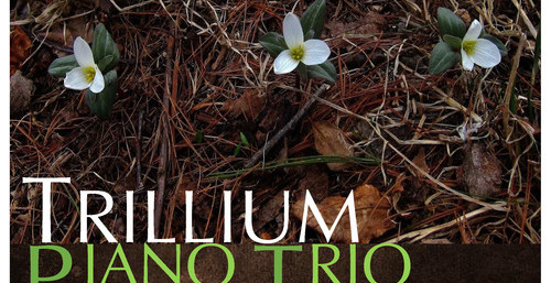 Trillium Piano Trio, St. Paul's Episcopal Church, May 21, 3pm, Yoko Sata Kothari, piano, Ruby Berland, violin, Susannah Kelly, cello